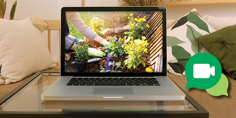 Image on a computer screen of a woman planting a flower garden